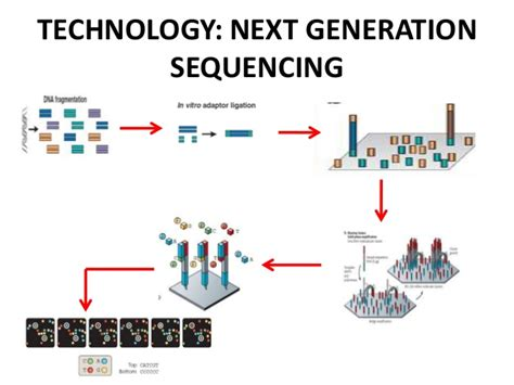 Illumina Next Generation Sequencing by Clinical Applications Of Next Generation Sequencing