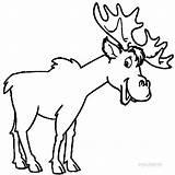 Moose Coloring Printable Elk Head Funny Outline Drawing Skull Cool2bkids Template Animal Templates Getdrawings Sketch Clipartmag Popular sketch template