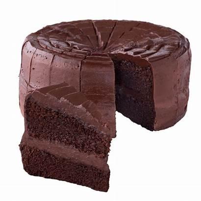 Cake Chocolate Pastel Fudge Makanan Ringan Truffle