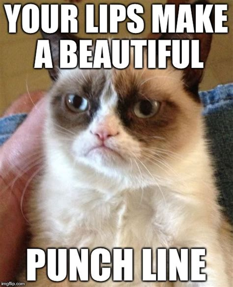 Create A Grumpy Cat Meme - imgflip create and share awesome images