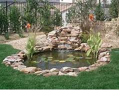Water Garden Member Of The International Waterlily Association Better Business