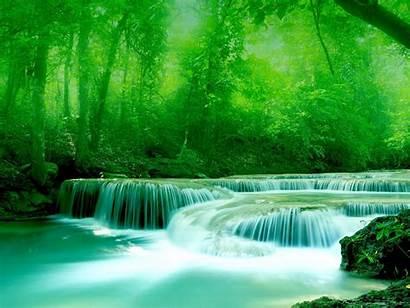 Greenery Water Wallpapers River Desktop Rocks Trees