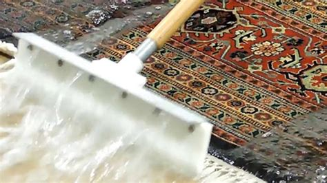 nettoyage tapis persan ramassage et livraison