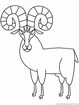 Sheep Coloring Bighorn Pages Animals Ram Horn Printable Rams Drawings Clipart Template Cliparts Cartoons Clip Coloringpagebook Coloringpages101 Don Popular sketch template