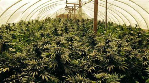 emerald metrics llc seedinvest