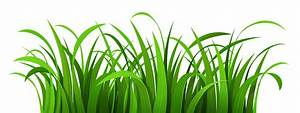 Grass Patch PNG Clipart | Clipart Panda - Free Clipart Images