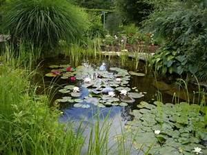construire un bassin de jardin dossier With photos de bassins de jardin