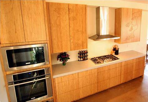 Bamboo Cabinets  Green Cabinets  Custom Cabinets