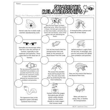 worksheets  relationship