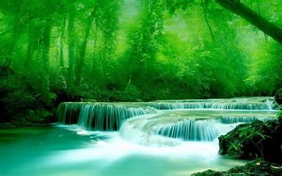 Wallpapers Widescreen Water 3d River Rocks Greenery