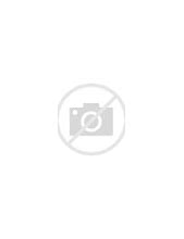 Image result for The Universe In A Nutshell Book