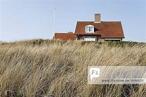Ferienhaus In Den Dünen : bergen aan zee europa holland in den d nen versteckt nordseek ste holl ndisches ferienhaus ~ Watch28wear.com Haus und Dekorationen