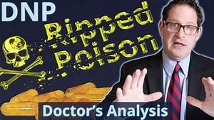 Dnp - Poison Fat Burner - Doctor U0026 39 S Analysis Of Side Effects  U0026 Properties