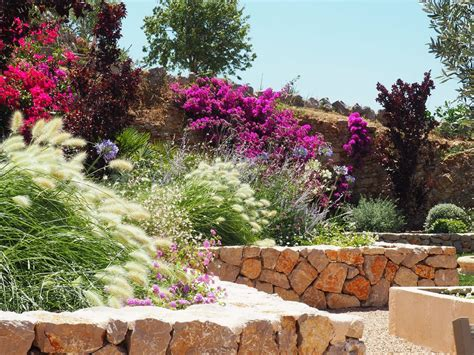 progetto giardino mediterraneo esempio di progettazione giardino mediterraneo i