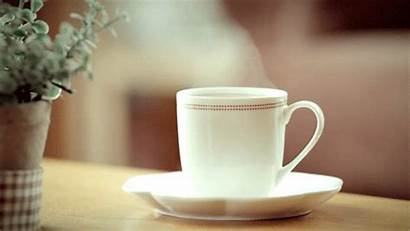 Tea Drink Steam Coffee Animated Cup Steaming