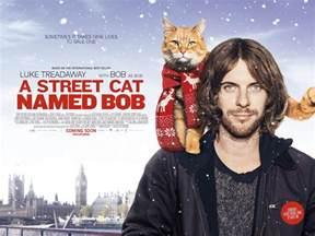 a cat named bob cats in a cat named bob 2016 the great cat