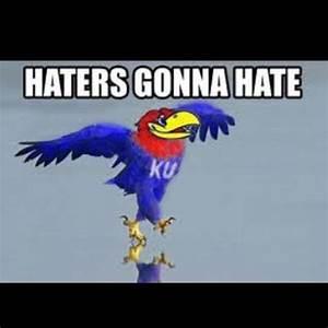 Haters Gonna Hate #jayhawks #ku #finalfour   Photography ...