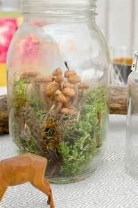 Deko Im Glas Ideen : deko aus wald und wiese leelah loves ~ Orissabook.com Haus und Dekorationen