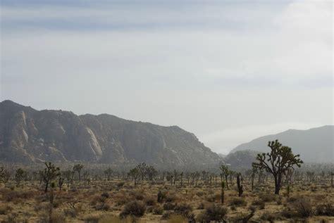 Free Stock photo of Arid desert landscape in Joshua Tree