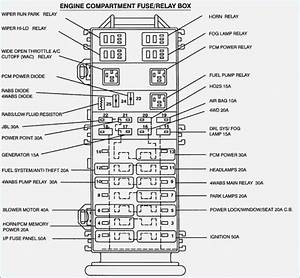 1993 Ford Ranger Fuel Pump Wiring Diagram  U2013 Moesappaloosas Com