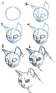 how to draw cats savanna williams how to draw cats faces heads