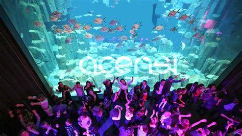 afterwork acensi aquarium de