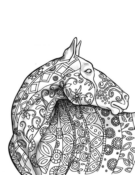 the amazing world of horses adult coloring book i cindy