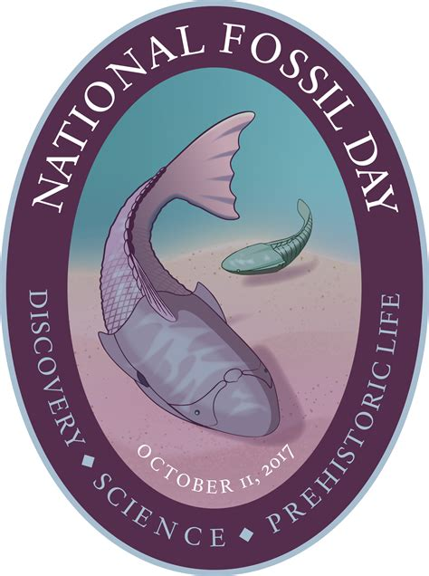 national fossil day  artwork national fossil day