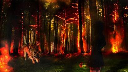 Fire Wolf Forest Background Wallpapers Fantasy Rose
