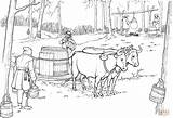 Maple Syrup Oxen Coloring Pulling Sled Pages Barrel Printable Ox Tree Drawing Clipart sketch template