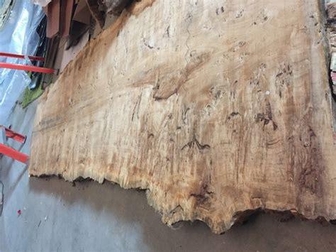 burl wood slab   european black poplar suggestions