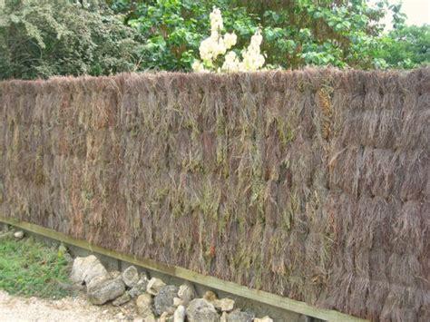 cuisine japonaise facile brande de bruyère une clôture naturelle au jardin