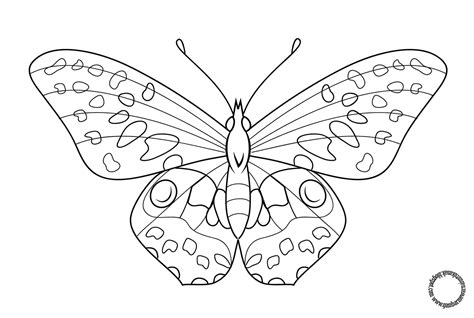 Gambar Mewarnai Kupu-kupu Untuk Anak
