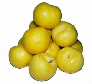 Fruit eiwit