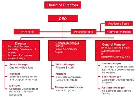 organisational chart hcs group singapores centre
