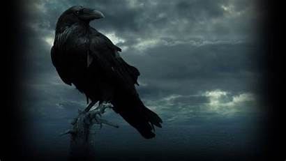 Raven Wallpapers Thrones Backgrounds Warcraft Eyed Three