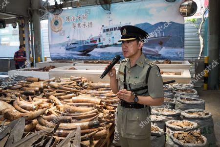 A 18 hónapos, 70 kilogrammos hím oroszlánt a tengerentúlról hozta el gazdája, egy kínai állampolgárságú férfi, hogy. Videa Seized : Brazilian army steamrolls 2000 seized ...