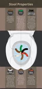 toilet talk what does your waste say about you my health maven