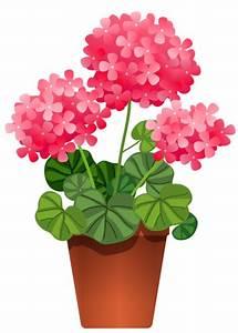 Pot De Fleur Transparent : fleurs clat ornement flowers tubes bouquets clipart vessels pinterest clip art ~ Teatrodelosmanantiales.com Idées de Décoration