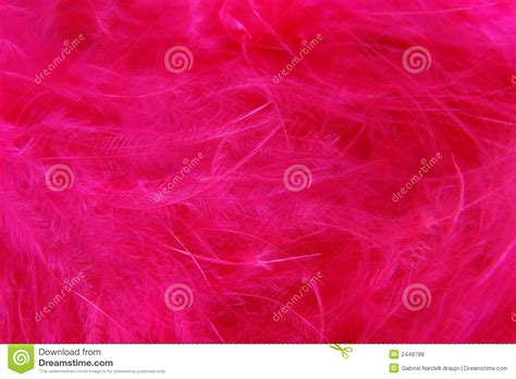 pink abstract background royalty free stock photos image