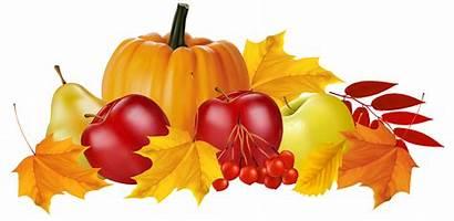 Autumn Clipart Fall Fruit Pumpkin Transparent Fruits