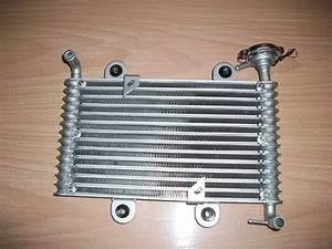 Cache Radiateur Pas Cher : chinese quad fuite bas de radiateur zhenhua 250 ~ Premium-room.com Idées de Décoration