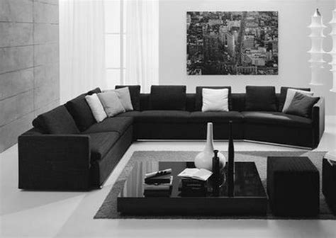 Black White And Living Room Ideas by Black And White Living Room Ideas Plant In Pot Black