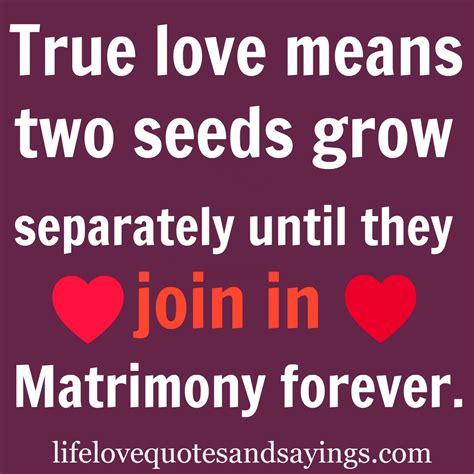 true love quotes  sayings  boyfriends quotesgram