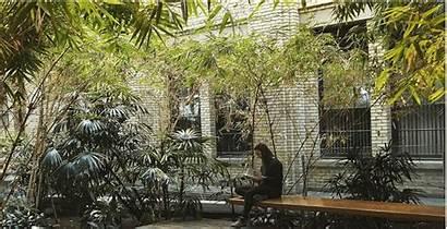 Bamboo Garden Study Toronto Secret Screen There