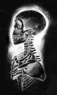 deviantART Skeleton Skulls