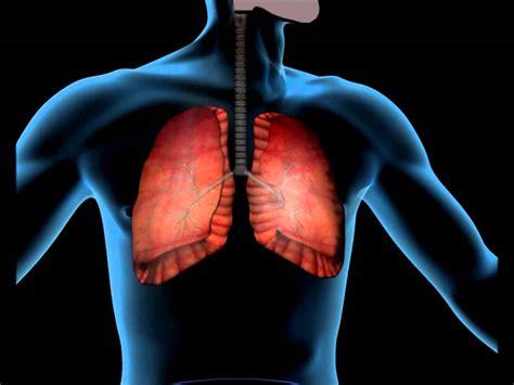 Propedutica de enfermagem 06 exame do aparelho cardiovascular
