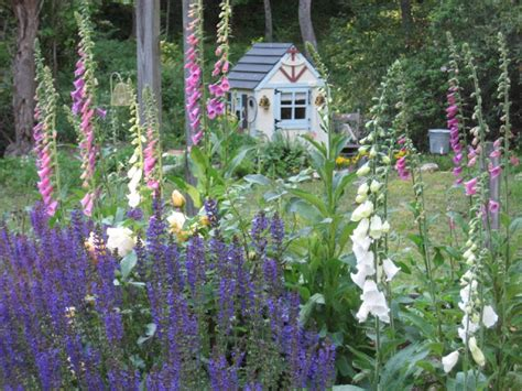 Whimsical Cottage Gardening......