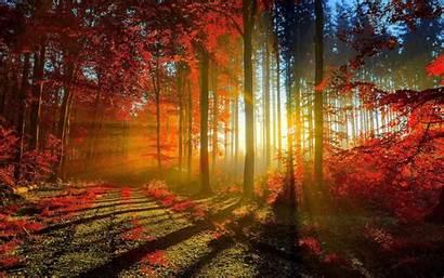 Scenery Wallpapers Desktop Backgrounds Scenes Fall Autumn