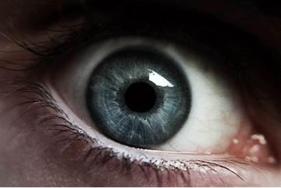 Eyes Iris Gifs Mundo Dos Purple Curiosidades